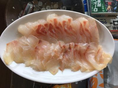 瀬戸内産真鯛の刺身