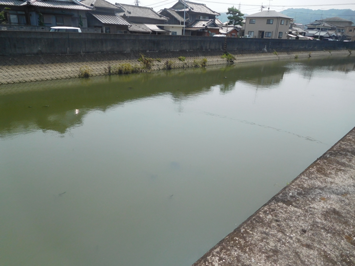 和気地区の川