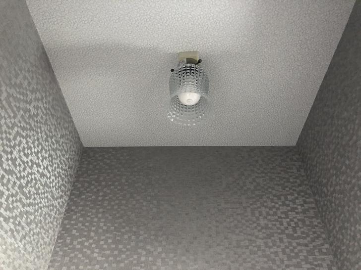 トイレ照明1