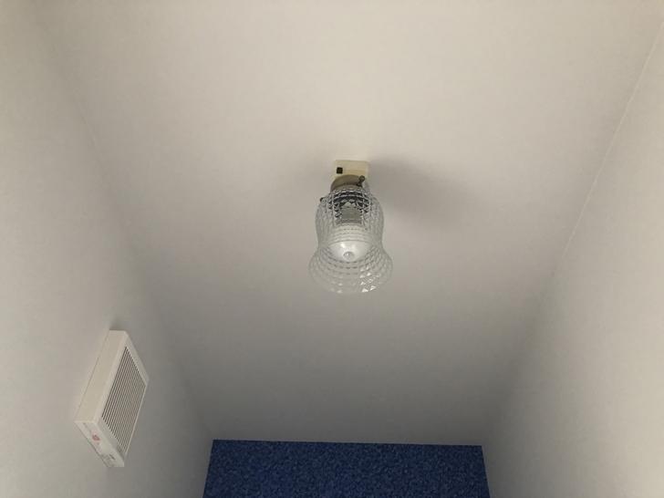 トイレ照明2